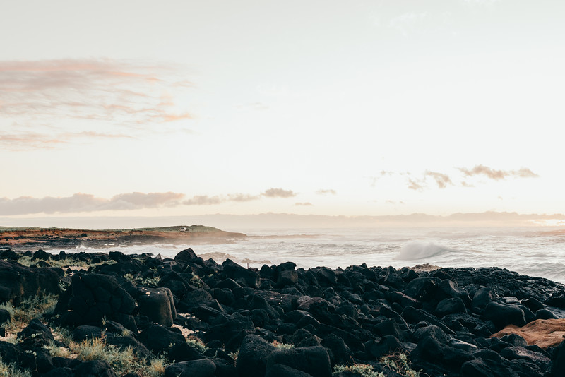 Hawaii20-158.jpg