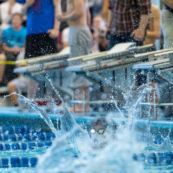 2018_KSMetz_Feb17_SHS Swimming_ State Finals_NIKON D5_5179.jpg