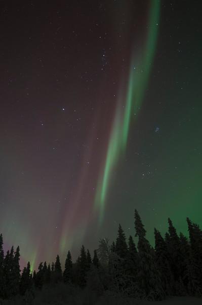 Northern Lights near Ruka
