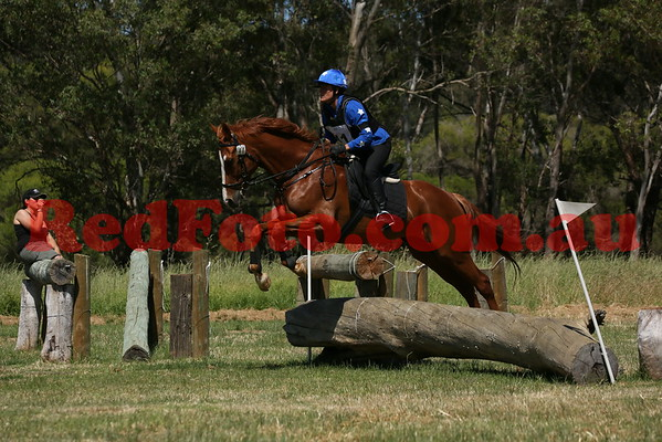 2014 11 09 Swan Valley Hunter Trials 65cm 17yrs and Older