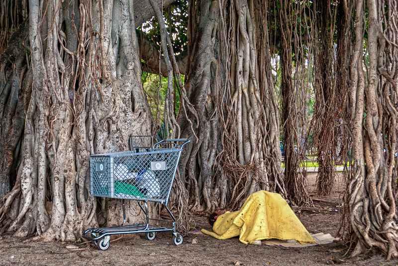 Homeless Man Sleeps with Possession in Kapiolani Park, Honolulu Hawaii