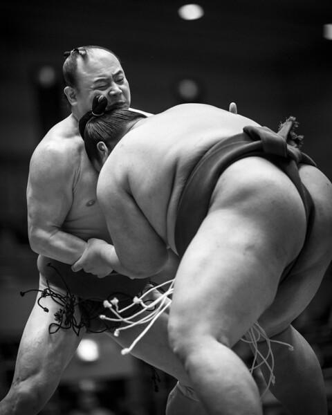 Osaka Sumo 220313 14 .jpg