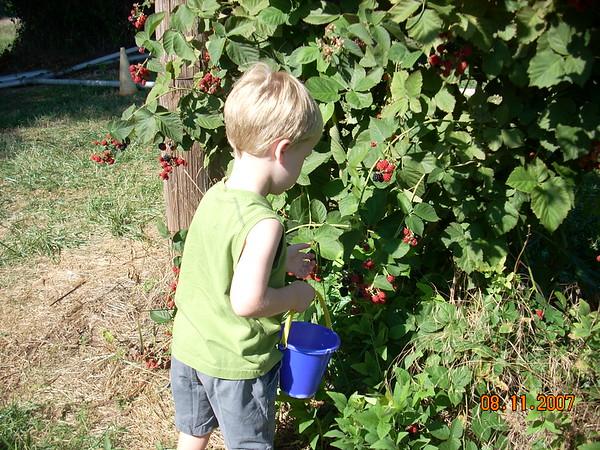 verano 2007 Wash