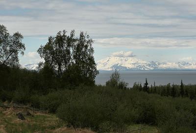 Homer, Alaska June 2008