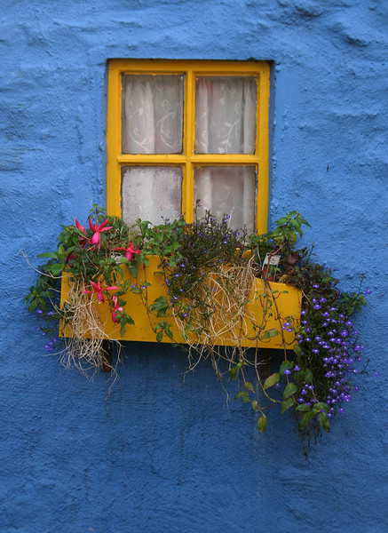 blue and yellow window.jpg