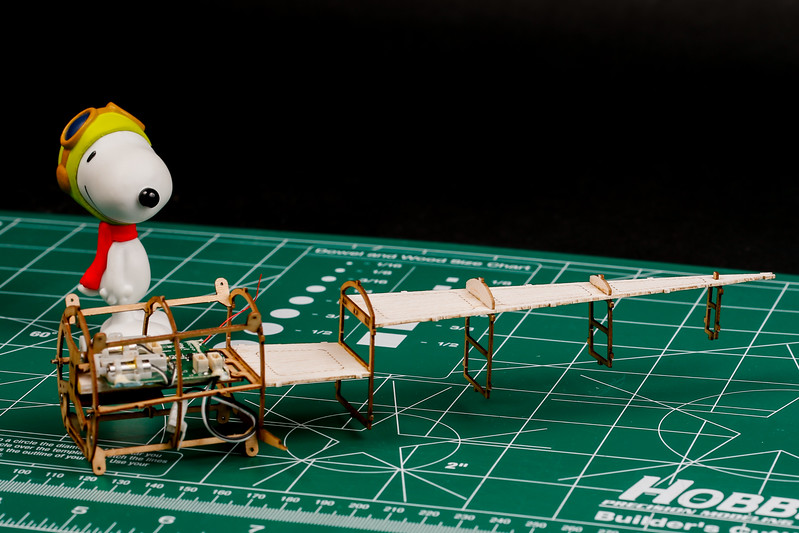 RC-Sopwith-Pup-45.jpg