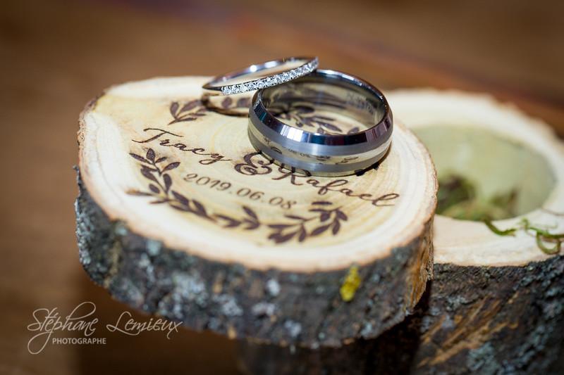stephane-lemieux-photographe-mariage-montreal-20190608-006.jpg