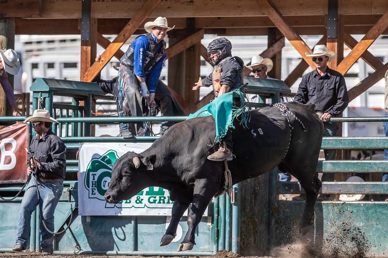 2019 Rodeo E (230 of 512).jpg