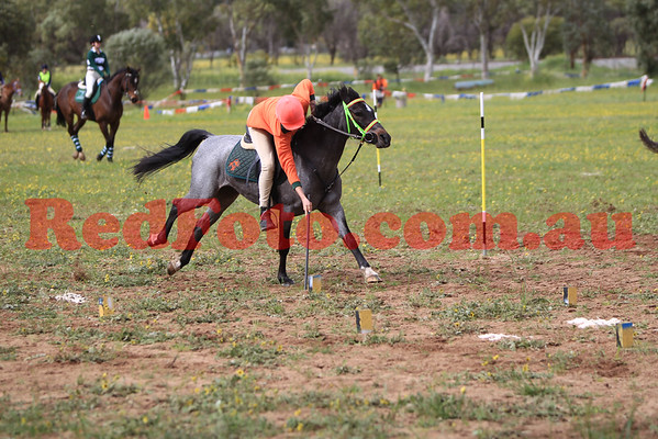 2014 09 07 PCAWA Active Riding Champs Qualifier Game 1 Stick Pegging