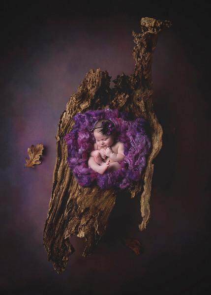 Newborn_Sweet Baby Girl_Sarah Soriano.jpg
