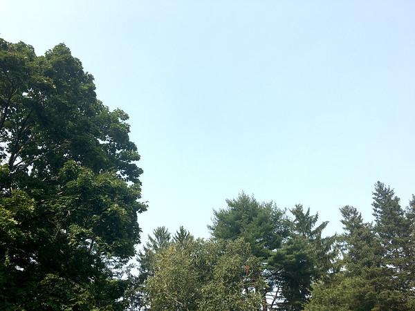 CT haze