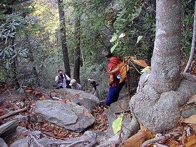 Steep @$$ climb heading toward Rainbow Falls at Camp Greenville SC