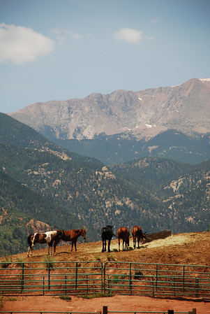 Colorado - Summer Vacation - Day 3 (Horseback - Garden of the Gods)
