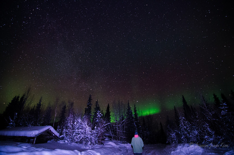USA-Alaska-Wiseman-Aurora-2744.jpg
