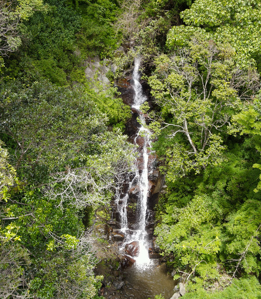 Waterfall on Quebrada Londres in Pico Blanco, Escazu, Costa Rica