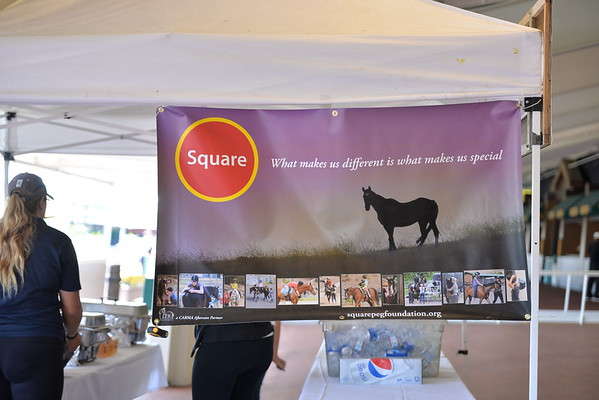 Square Peg Volunteers at Golden Gate Fields