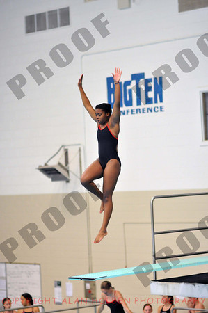Michigan Diving Assn. State Championship - practice - Sunday, June 29