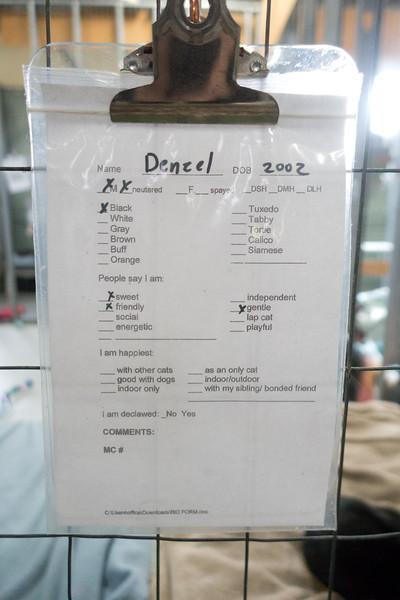 DSC06069.jpg
