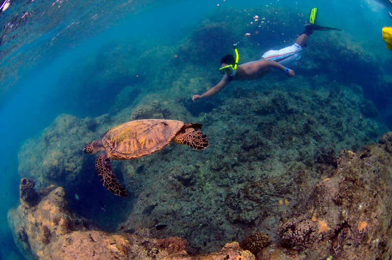 Hawaii - Hanauma Bay-31.JPG