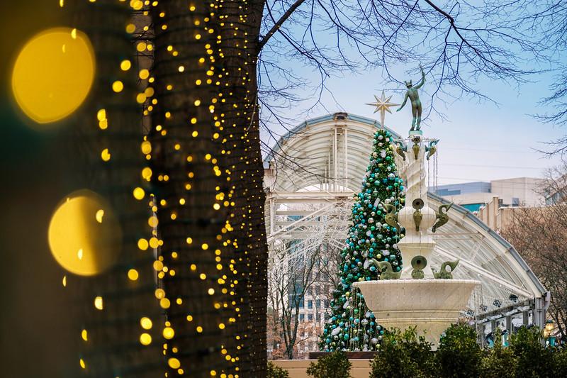Holiday lights at Reston Town Center