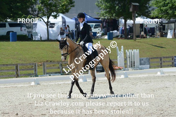 ASHLEY RANKIN AND CHARTREUSE #181
