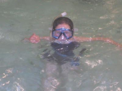 2013 - Diving