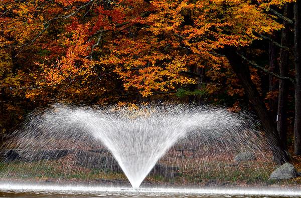 10/16/2019 Mike Orazzi | StaffrFall foliage in Bristol's Page Park.