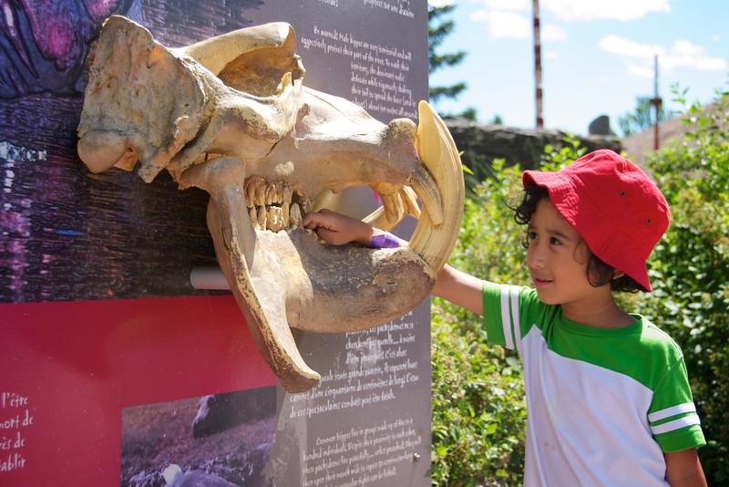 That's some skull