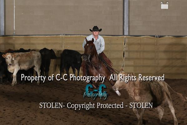 $25,000 Novice Horse sun
