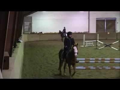 TSRC 2019-02-24 Hedgeland Farm Video