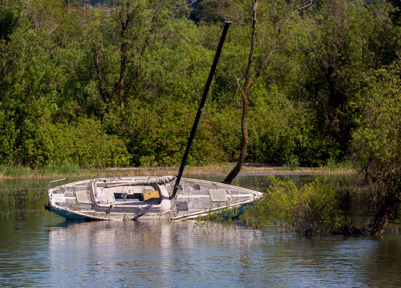 What is this?  A boat has lost its owner.