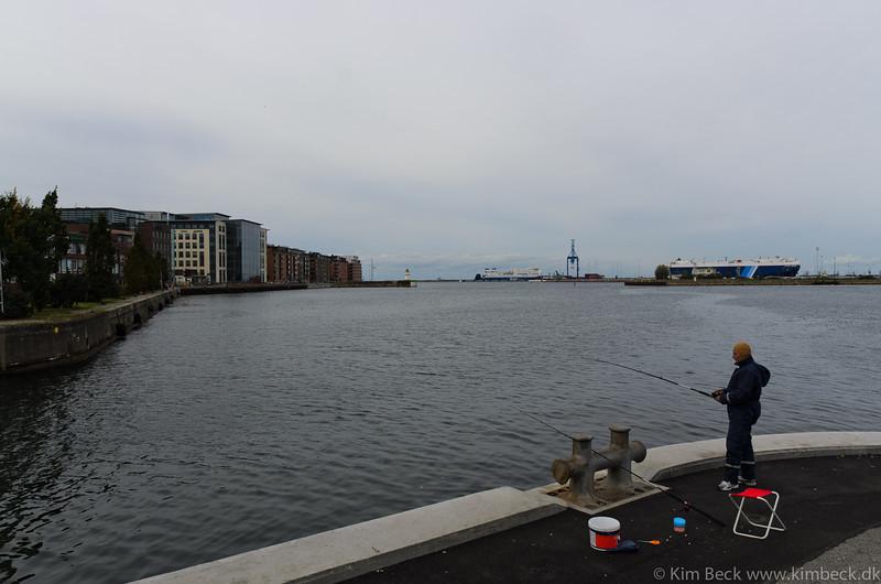 Malmø 2011 #-37.jpg
