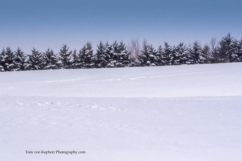 Tom von Kapherr Photography-7470.jpg