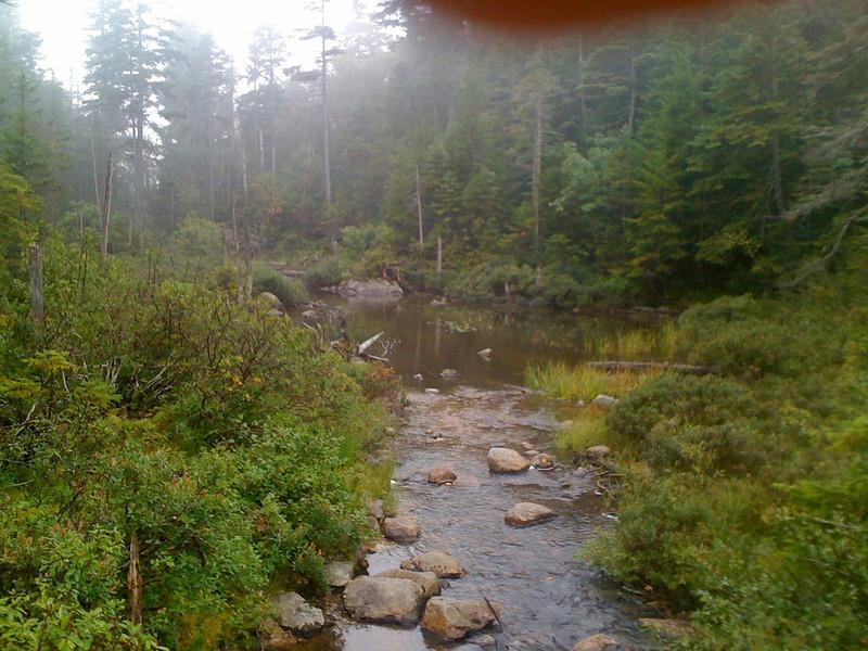 White Mountain Trail