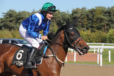 3 Forta Stud Mares & Fillies Conditions 1m