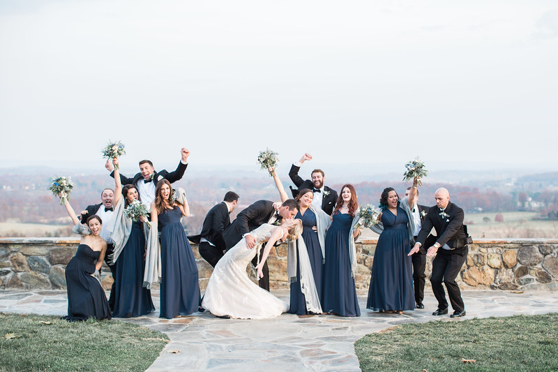 Super cute wedding party in navy and silver from Meg and Kyle's Bluemont Vineyards wedding reception. Images by top Washington DC wedding photographer Jalapeno Photography.