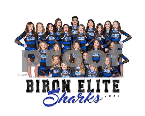 Biron Elite Team & Individual Photos