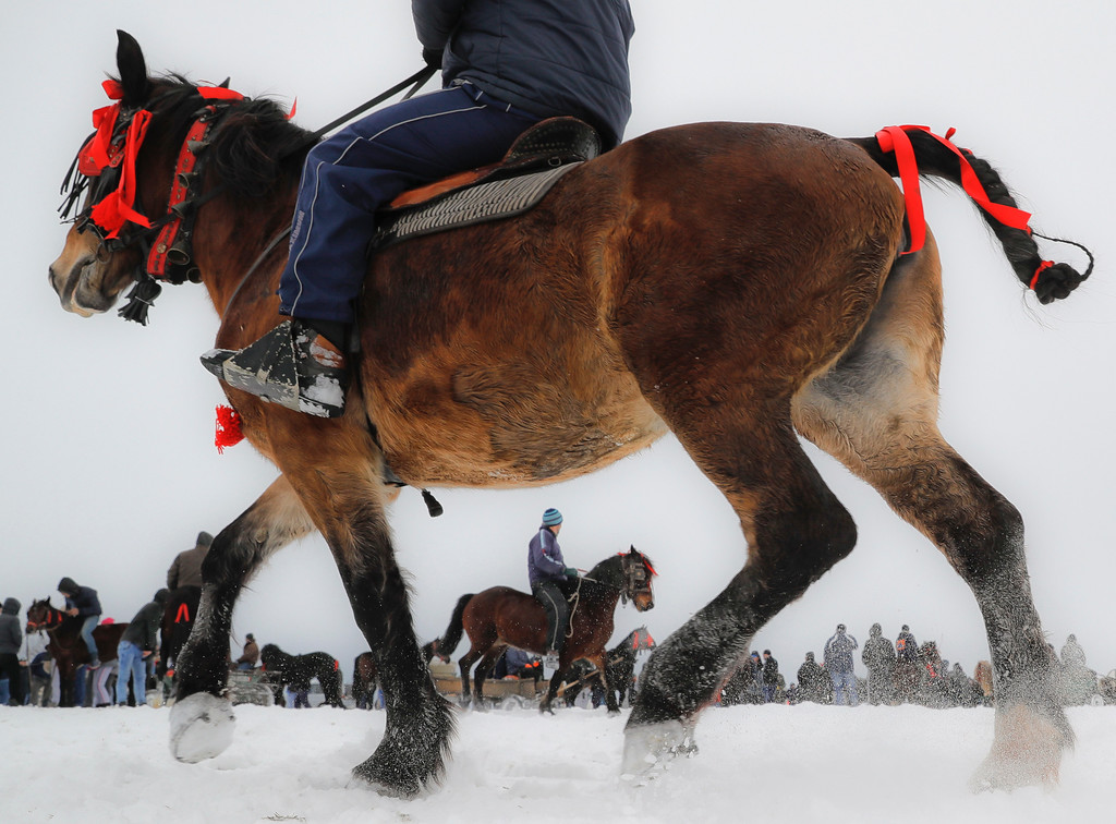 . Villagers prepare for the traditional Epiphany celebration horse race in Pietrosani, Romania, Friday, Jan. 6, 2017. According to the local Epiphany traditions, following a religious service, villagers have their horses blessed with Holy water then compete in a race. (AP Photo/Vadim Ghirda)