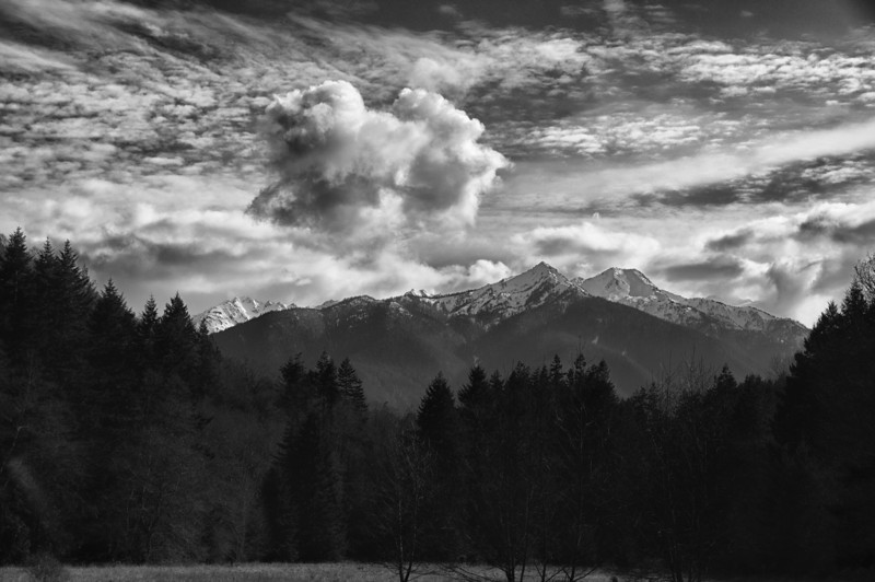 26 Mar 13.  With weather almost perfect, we took advantage of it and made a short trip over to the Olympic Peninsula to see what we might find. What we found was nothing but one beautiful sight after another and after about 300 frames we returned home in the nearly dark to a most spectacular sunset. All-in-all a day to remember and one which will be providing several shots over the next couple of weeks. One stop was at Madison Creek, a spot we've visited a couple times before but never with the amount of water that was spewing over the top like it was today. After shooting many frames we returned to the vehicle preparing to start the trip back home. Now there is an old adage in photography that says, after you've taken the shots you want, turn around and see what you missed right behind you. That phrase coming to mind, I did just that to get today's offering. It being B&W Tuesday, I've added in some noise to simulate the old B&W films as well as to add a bit more realism to the water vapor. Nikon D300s; 18 - 200; Aperture Priority;  ISO 200; 1/250 sec @ f / 9.
