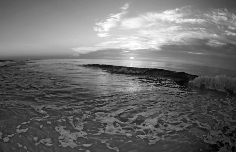 SCOPe_Huntington Beach State Park OCT 2012_9 B&W.jpg