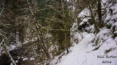 Trail to a snowy Punchbowl Falls
