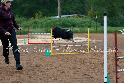 BLAST ASCA - Jumpers R1 Novice - Sunday 05/20/12