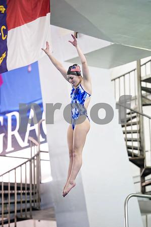 2015 Diving