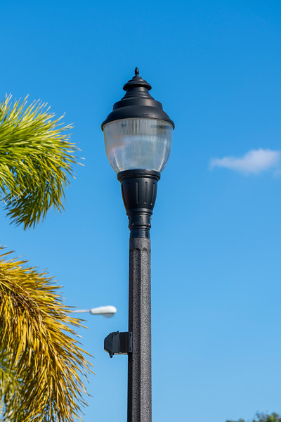 Spring City - Florida - 2019-308.jpg
