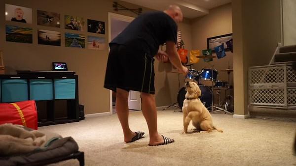 Jeter Training Video