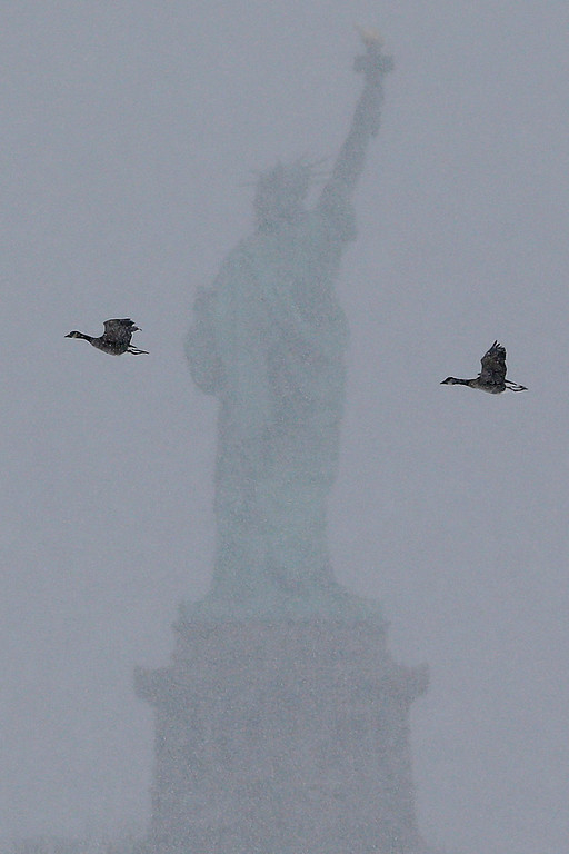 . Birds fly near the Statue of Liberty during a storm seen from Liberty State Park, Monday, Jan. 26, 2015, in Jersey City, N.J. The Philadelphia-to-Boston corridor of more than 35 million people began shutting down as a winter storm, that could unload a paralyzing 1 to 3 feet of snow, moved through the northeast. (AP Photo/Julio Cortez)