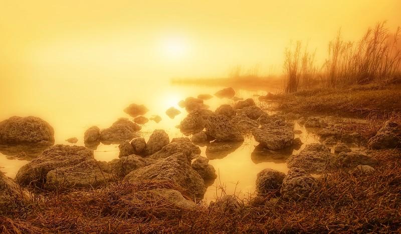 Foggy Days by Ray Bilcliff - www.trueportraits.com