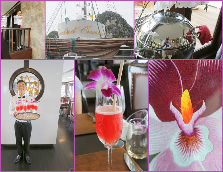 Welcome Aboard the Orchid Cruise