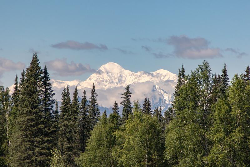 Alaska 2015 - Denali -  072015-1636.jpg