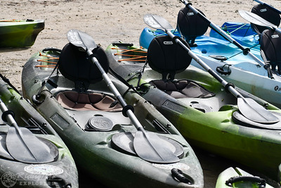 1230PM Heart of Rookery Bay Kayak Tour - Feldman
